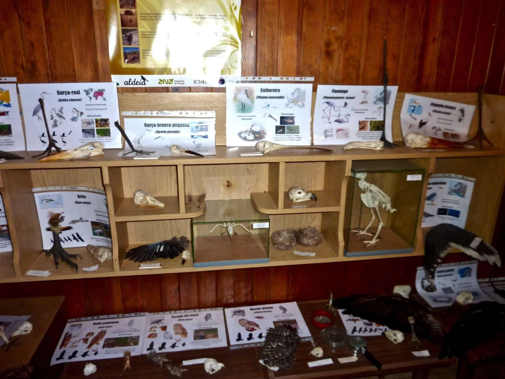 Displays in the Information Centre